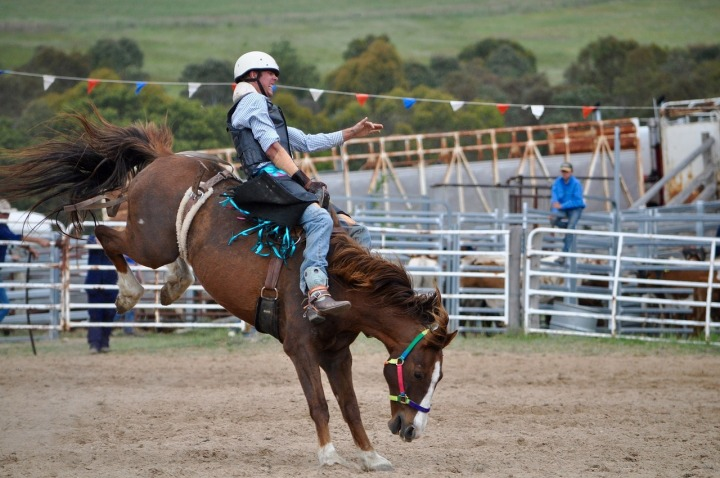 cowboys-1248632_1280
